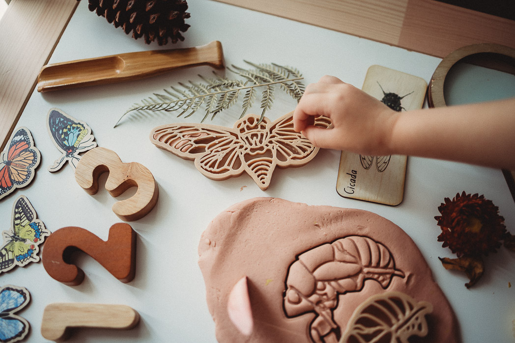 Birth of Butterflies Eco Dough Cutters