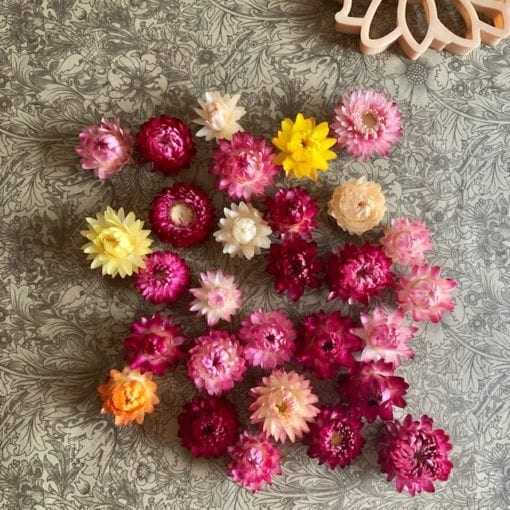 Dried Flowers Craft and Play Little French Heart Sensory Play