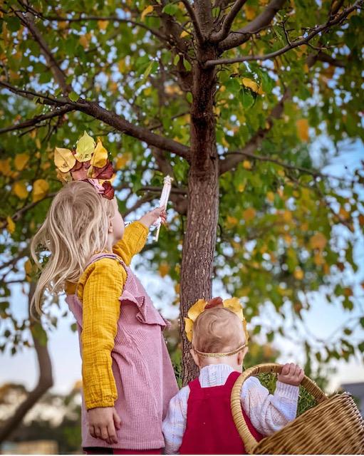 Heart of Blooms Autumn Leaf Flower Crown