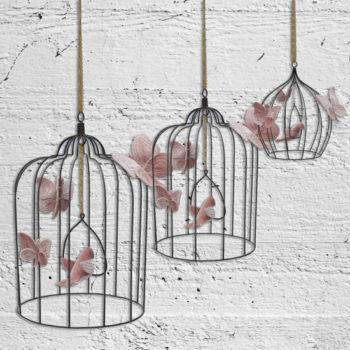 Numero-74-Boho-Birdcase-Rose-sizes
